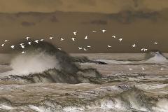 Waves Inverted