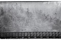 sunken-Meadow-Bridge-in-Fog